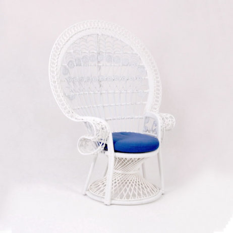 Outdoor peacock chairs